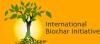 International Biochar Initiative
