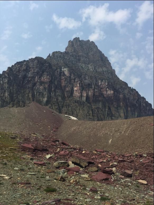 Glacier National Park Alpines