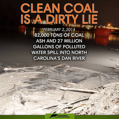 Coal Ash Spill in Dan River Demonstrates: